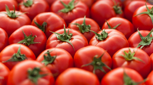 Russia lifts ban on import of tomatoes from Armenia